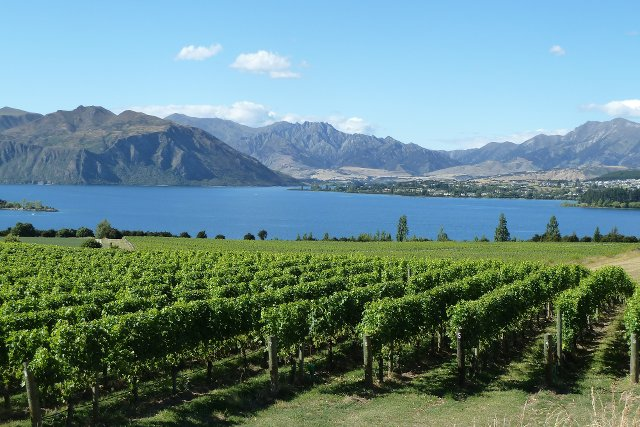 New Zealand Highlights and Hot Spots LGBTQ Tour